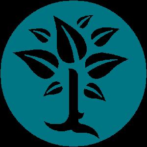 Bachovy esence - Energie rostlin