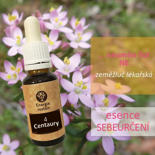 Bachovy esence_Centaury_Energie rostlin