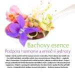 Energie rostlin - článek v Regeneraci - Lucie Marešová