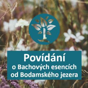 setkání a informace - Energie rostlin - Bachovy esence