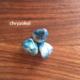Energie kamene - energie rostlin - chryzokol