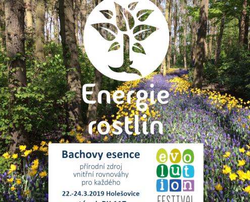Energie rostlin na Evolution festivalu 2019