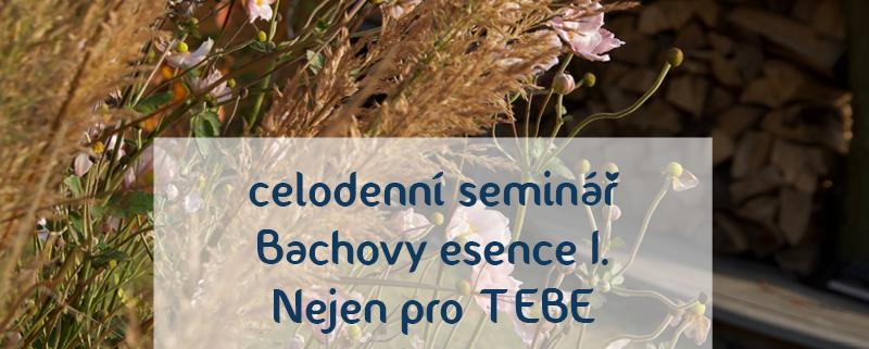 semináře a poradenství - Bachovy esence