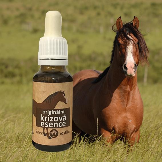 Rescue remedy - pro koně krizovka