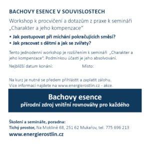 Bachovy esence navazující seminář - workshop
