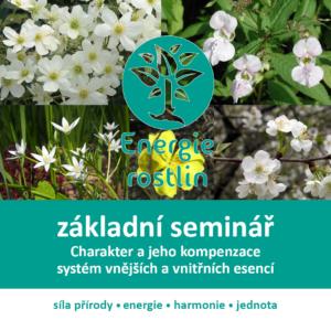 Bachovy květové esence - seminář
