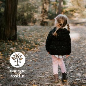 splněné dětské přání - přispíváme společně s Vámi Energie rostlin