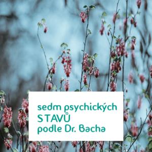 Bachovy esence - 7 emocionálních stavů Dr. Bacha