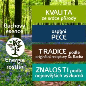 výhody bachových esencí Energie rostlin