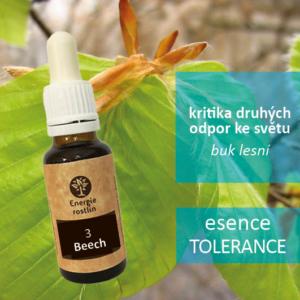 3 - Beech . esence tolerance - kritika druhých, odpor ke světu