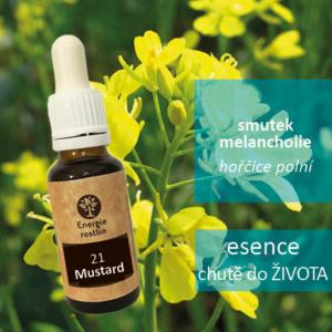 21 - Mustard - esence chutě do života, smutek, melancholie