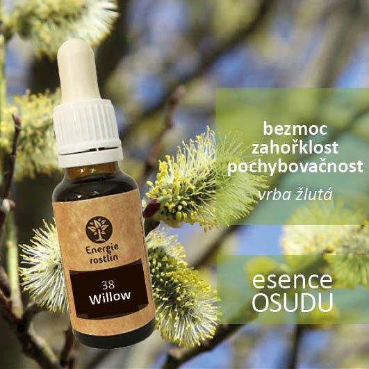 38 - Willow - esence osudu, bezmoc, zahořklost, pochybovačnost