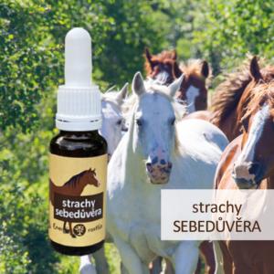 směs Bachových esencí na strachy a posílení sebedůvěry podle Dr. Bacha pro koně - Energie rostlin