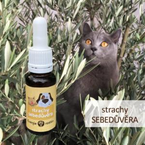 směs Bachových esencí na strachy a posílení sebedůvěry Dr. Bacha pro psy a kočky - Energie rostlin