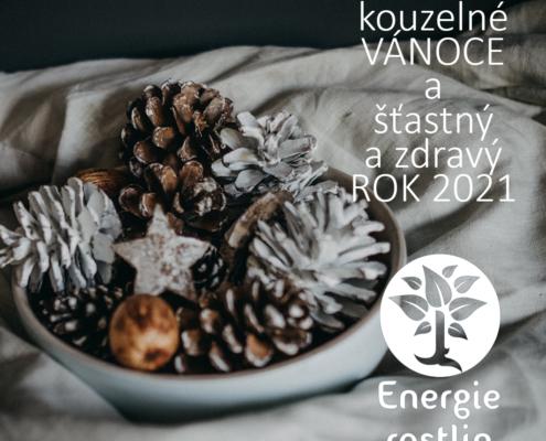 krásné vánoce a PF 2021