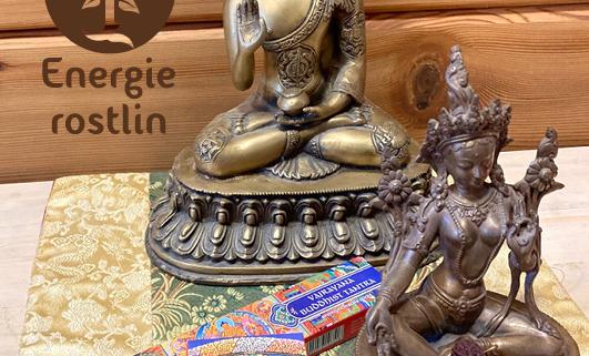Meditace, praxe Buddhistické tantry